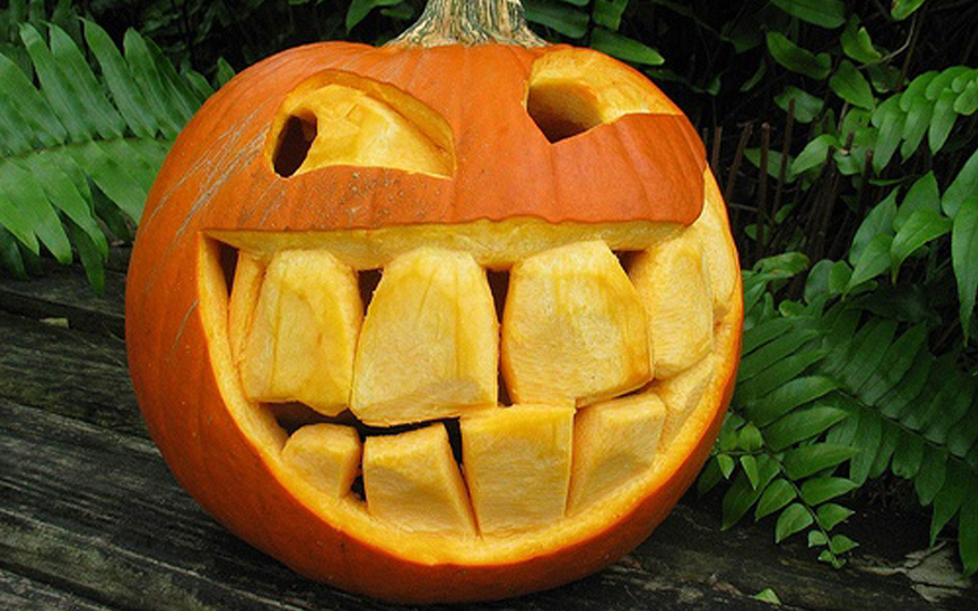 Funny halloween pumpkin creative ads and more Pumpkin carving designs photos