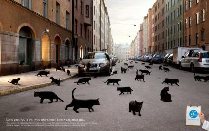 black cats car insurance ad creative ads and more. Black Bedroom Furniture Sets. Home Design Ideas