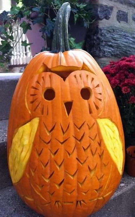 Owl pumpkin carving idea creative ads …