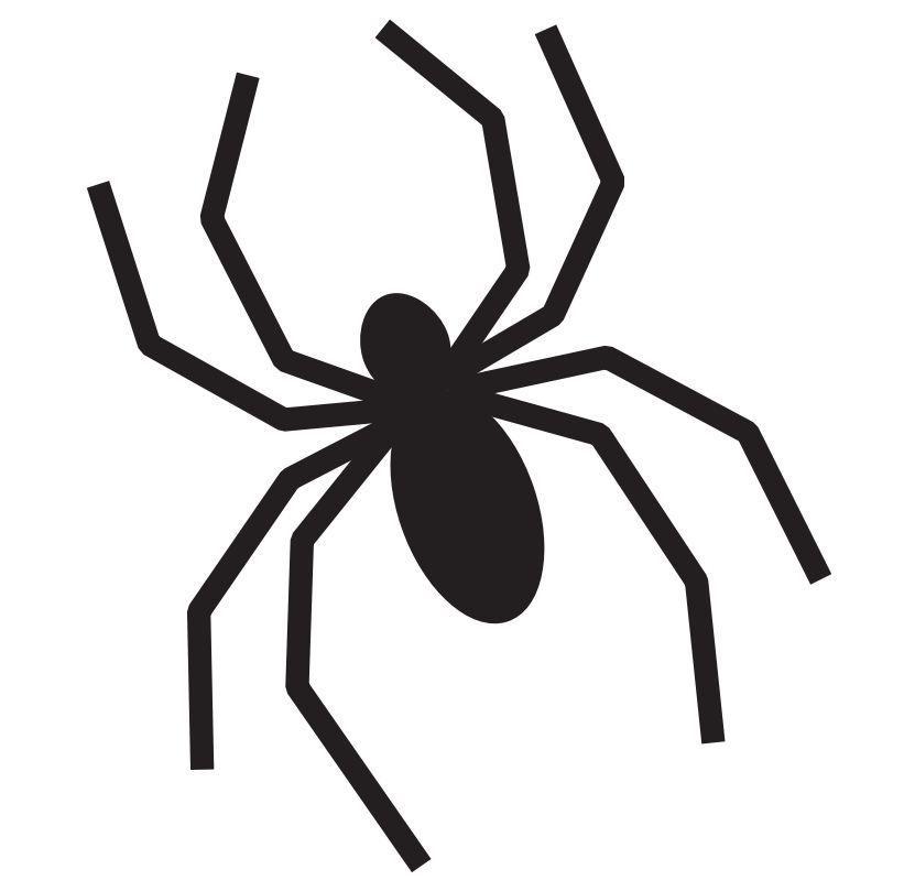 Simple Spider Halloween Pumpkin Stencil