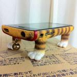 Cat iPhone Case WITH LEGS!