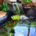 Creative garden landscaping idea(100)