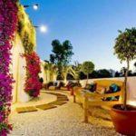 Creative garden landscaping idea(144)