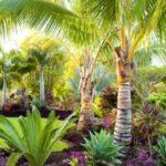 Creative garden landscaping idea(17)