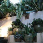 Creative garden landscaping idea(180)