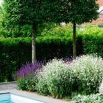 Creative garden landscaping idea(21)