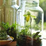 Creative Miniature Garden idea 25