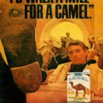 camel old ad 3
