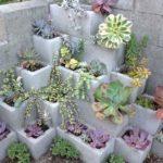 succulents-in-cinder-blocks-decor