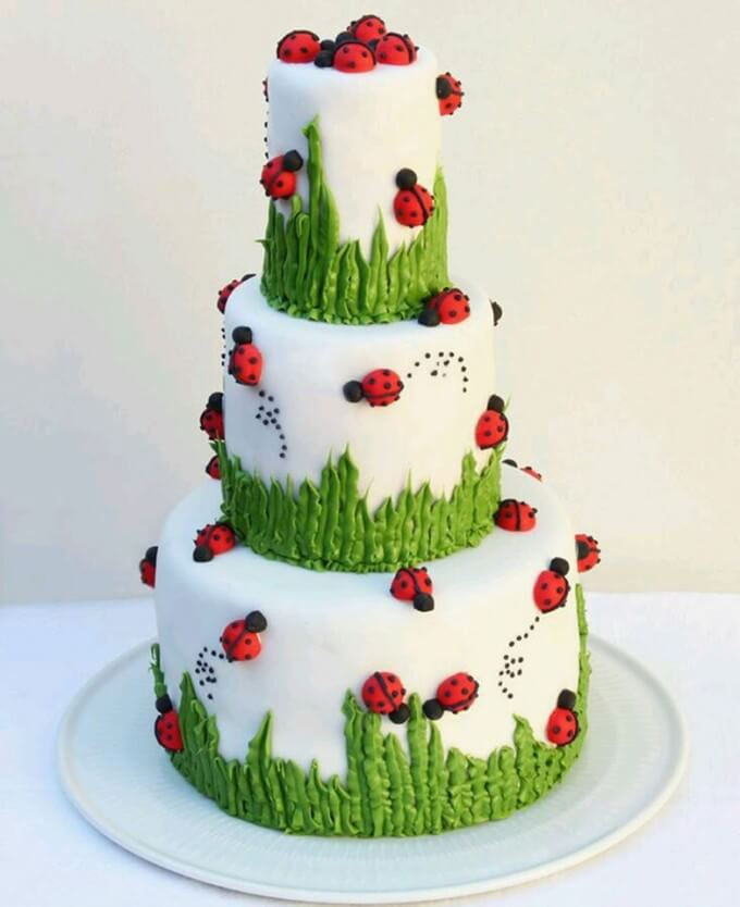 Ladybug Cake From The World Of Cakes