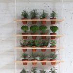 Awesome DIY Hanging Herb Garden