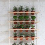 Awesome DIY Hanging Herb Garden