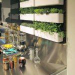 Awesome Herb Garden In Kitchen
