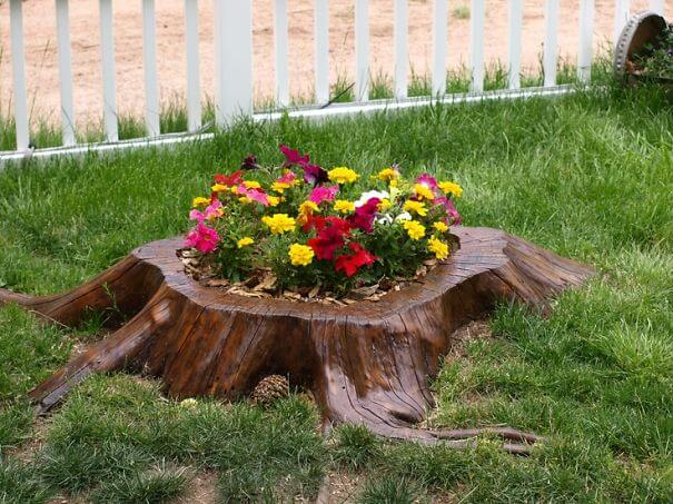 Awesome tree stump flower garden