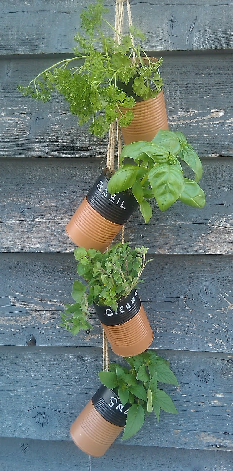 DIY Hanging Soup Can Herb Garden