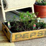 DIY Herb Garden In An Old Crate