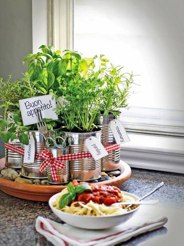 DIY Kitchen Countertop Herb Garden