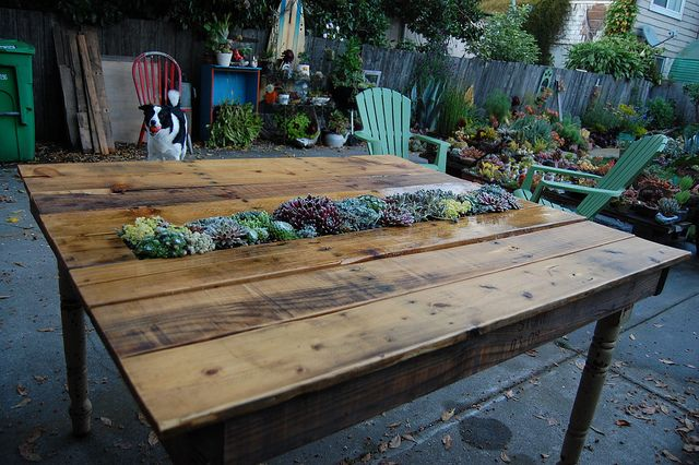 DIY Succulent Pallet Table