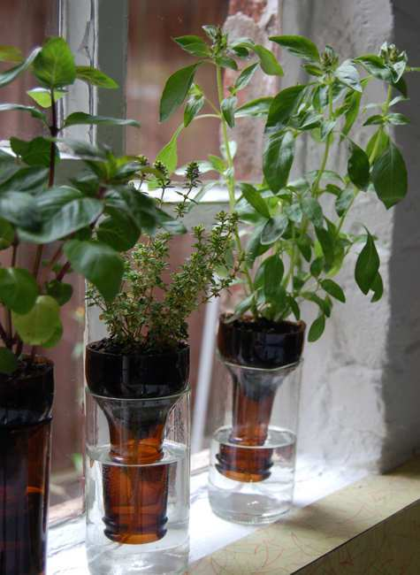 DIY Window Herb Garden | Creative Ads and more…