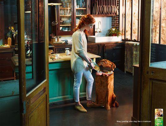 Dog Chow Ad