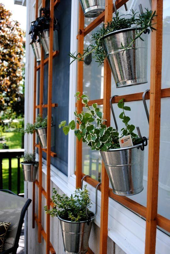 Hanging Trellis Herb Garden
