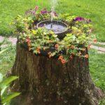 Tree Stump Idea Fountain