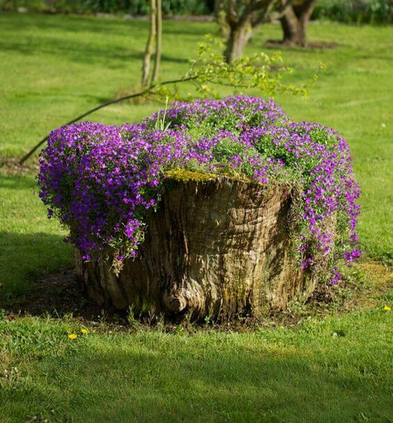 Tree Stump Planter Idea