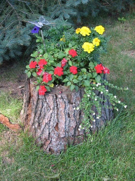 Tree Stump With Flowers