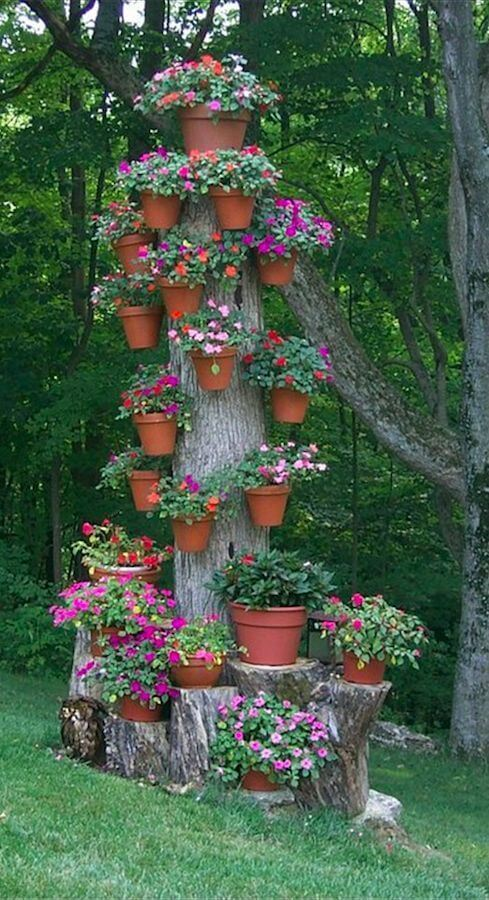 Tree Stump With Pots