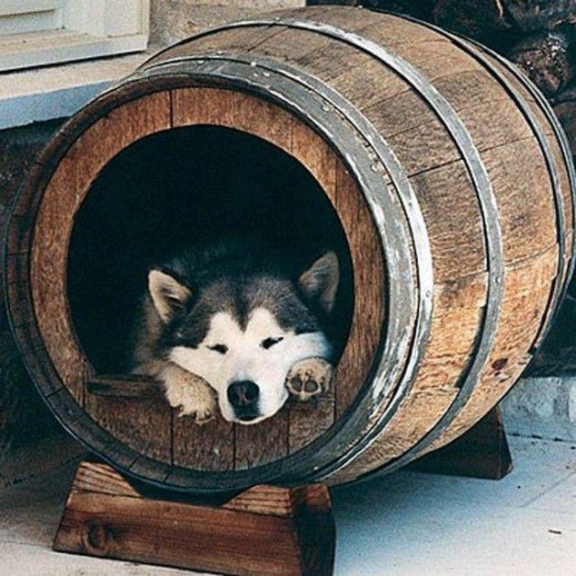Wine Barrel Dog House