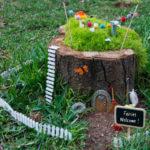 Tree Stump Flower Garden