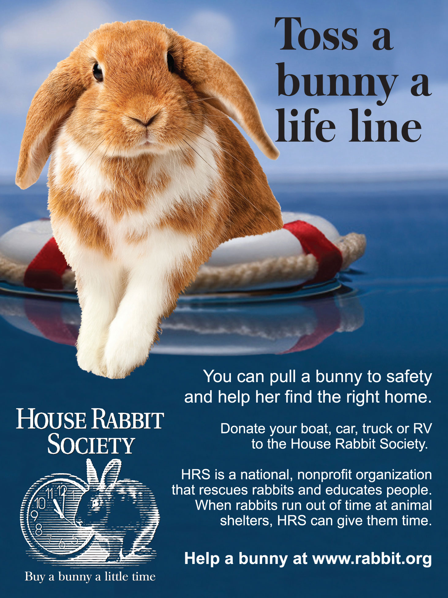 Donate Your Car Or Boat To House Rabbit Society
