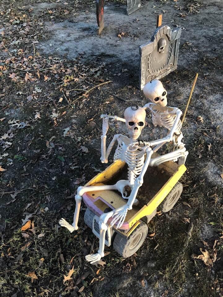 Halloween Props Skeletons